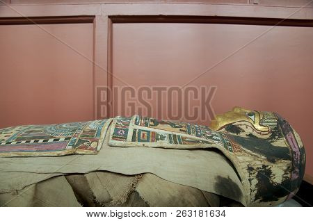 Egyptian Mummy In Sarcophagus In A Public Display