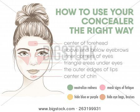How To Apply Your Concealer The Right Way Infographic Chart. Vector Illustration With Makeup And Bea