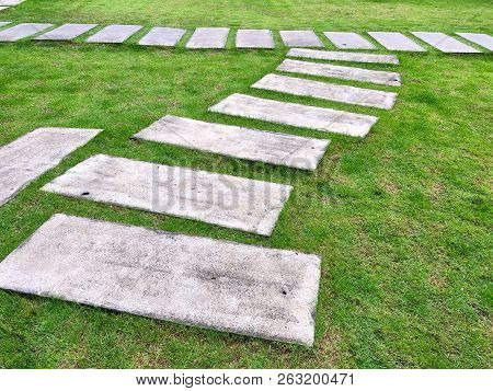 Cement Block On The Grass For Walkway In Public Park