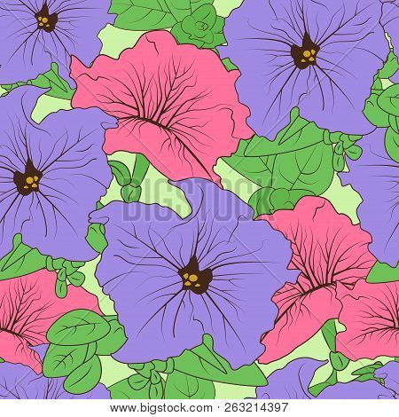 Flower Background Wallpaper Texture Seamless Sketch
