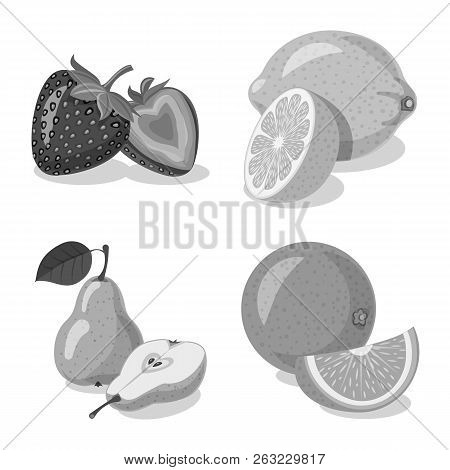 Isolated Object Of Vegetable And Fruit Sign. Set Of Vegetable And Vegetarian Vector Icon For Stock.