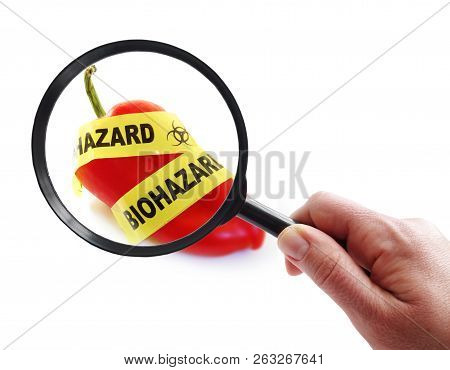 Red Pepper With Bio-hazard Tape And Magnifying Glass.food Safety Concept