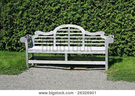 A single wooden garden bench in a formal garden or park positioned against a cedar hedge.
