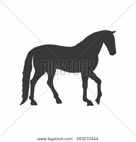 Horse Icon,black Horse Silhouette,horse Vector,eps 10 Isolated On White Background For For Graphics,