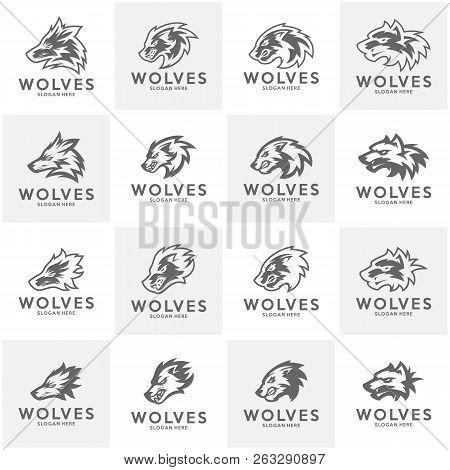 Set Of Modern Professional Wolf Logo For A Sport Team. Wolf Logo Vector Illustration.