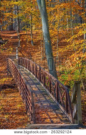 A Footbridge Along This Hiking Trail In Smith Woods In Burlington County New Jersey.