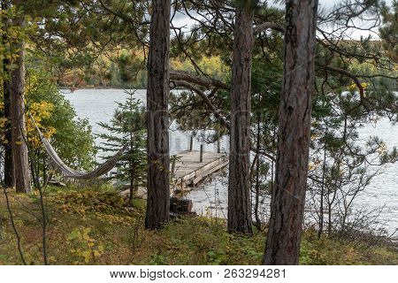 View Of A Lake Dock Through The Pine Trees Of A Forest