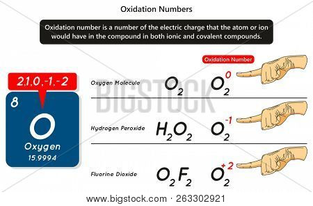 Oxygen Images Illustrations Vectors Free Bigstock