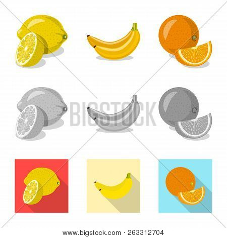 Isolated Object Of Vegetable And Fruit Logo. Set Of Vegetable And Vegetarian Vector Icon For Stock.
