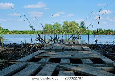 Carp Fishing Rods, Fishing Rod, Fishing Line, Coil, Reel.