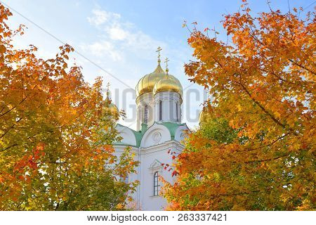 Orthodoxy Cathedral Of St. Catherine In Tsarskoye Selo At Autumn Day, Suburb Of St.petersburg, Russi