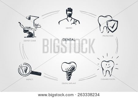 Dental - Dentist, Dentist Chair, Inspect, Dental Implant, Cleaned Tooth, Protection Vector Concept S