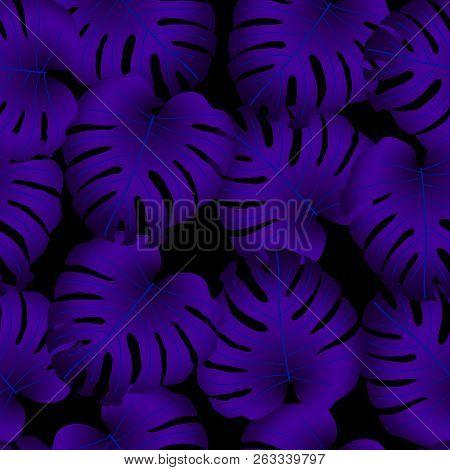 Vector Seamless Tropical Pattern, Bright Tropical Foliage, Monstera Leaves. Modern Bright Summer Pri