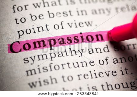 Fake Dictionary, Definition Of The Word Compassion.