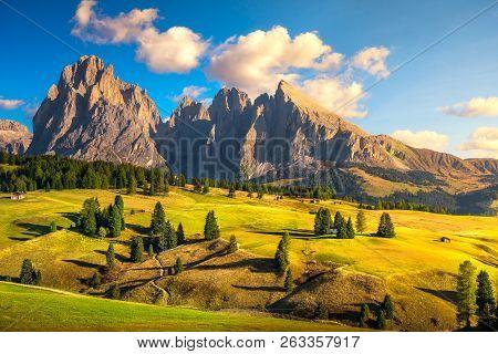 Alpe Di Siusi Or Seiser Alm, Dolomites Alps Sassolungo And Sassopiatto Mountains, Trentino Alto Adig