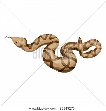 Rattlesnake Icon. Cartoon Of Rattlesnake Vector Icon For Web Design Isolated On White Background