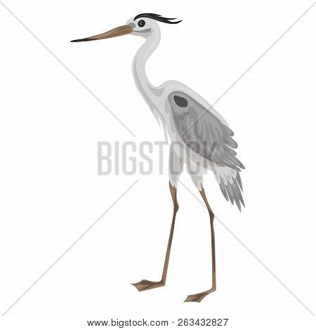 Grey Heron Icon. Cartoon Of Grey Heron Vector Icon For Web Design Isolated On White Background