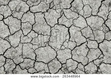 Dried And Cracked Ground.the Texture Of Black Earth.deep Cracks In The Fertile Land Without Rain