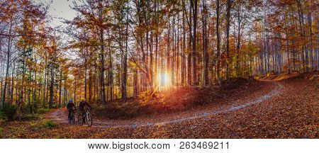 Cycling, mountain biker couple on cycle trail in autumn forest. Mountain biking in autumn landscape forest. Man and woman cycling MTB flow uphill trail.
