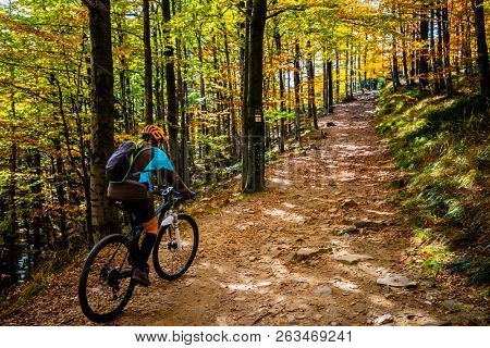Cycling woman riding on bike in summer mountains forest landscape. Woman cycling MTB flow trail track. Outdoor sport activity. poster