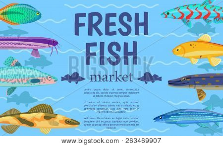 Fresh Fish Market Advertising Vector Illustration, Different Marine Inhabitants Collection, Colorful