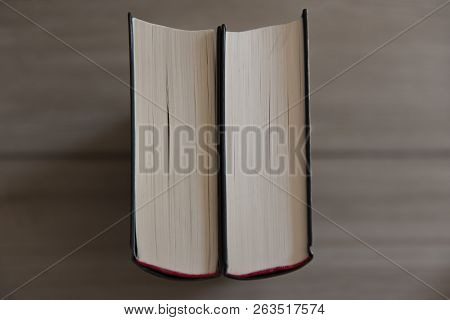 Two Books Are Standing On A Wood Background