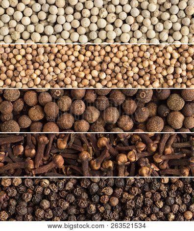 Collage Spices And Herbs As  Background. Collection Of Seasonings Arranged In Color.