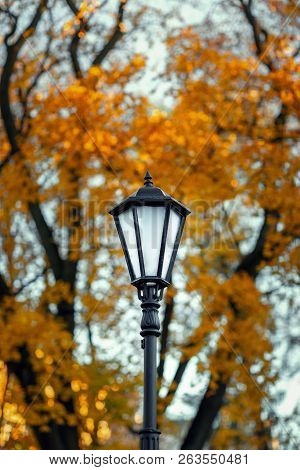 Old Lamppost On A Background Of Autumn Trees. Street Lighting