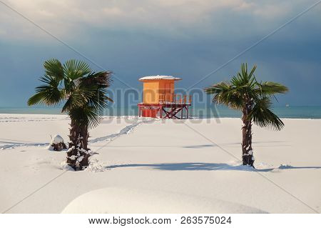 Snow Covered Lifeguard Tower Between Palm Trees