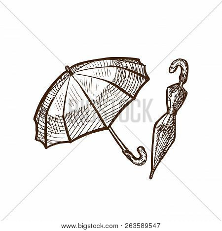 Autumn Rain, Rain Protection, Types Of Umbrellas In Different Positions.