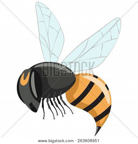 Wasp Vector. Hornet Cartoon Flat Icon Isolated On White Background.