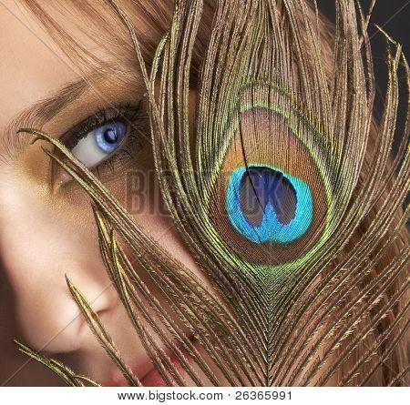blue eye hidden under peacock feather