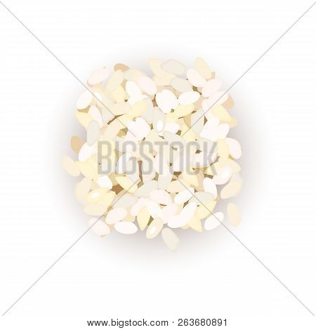 Arborio Rice Grains. Vector Illustration. For Culinary, Cafe,