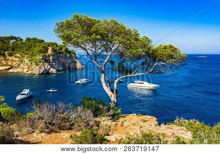 Mallorca Island, Luxury Boats Yachts At Portals Vells Bay, Spain Mediterranean Sea
