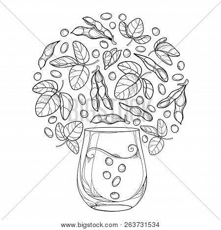 Vector Outline Glass Of Soy Milk And Bunch Of Soybean Pod With Beans And Ornate Leaf In Black Isolat