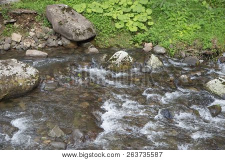 Beautiful Place At Source Of The River In The Mountains. Mountain River In Resort Sairme. Clean Moun