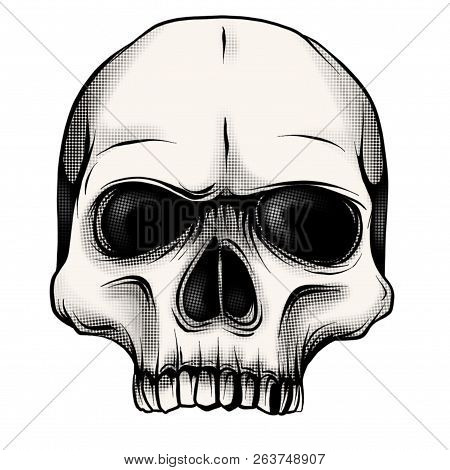 Black And White Illustration Of Human Skull With A Lower Jaw In Ink Hand Drawn Style.