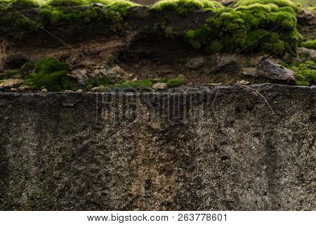 Closeup Old Stone With Green Moss. Gray Stone With Green Moss Texture Background