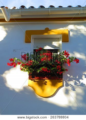 Profusion Of Red Flowers On Small Balcony In Village In Andalusia