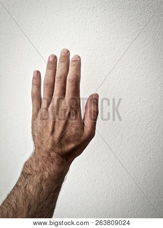 Outstretched Palm, Hand On A White Background, Part Of The Body, Part Of The Hand, White Skin, Five