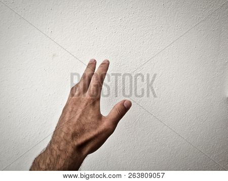 Outstretched Palm, Hand On A White Background, Back Of The Hand, Part Of The Body, Part Of The Hand,