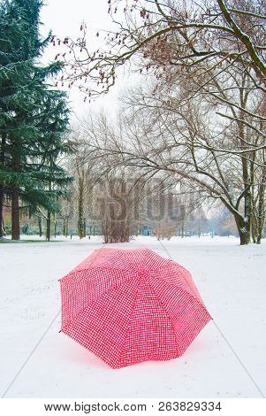 One Umbrella In Contrast With The White Snowy Ground With Bare Trees