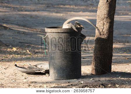 Vervet Monkey On A Trashcan