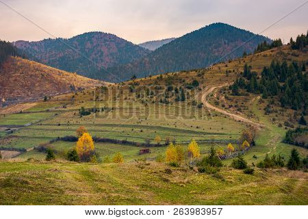 Autumnal Countryside In Mountains. Boring Overcast Autumn Weather. Country Road Winds Uphill In To T