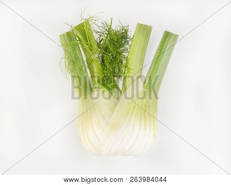 A Fennel Bulb On A White Background