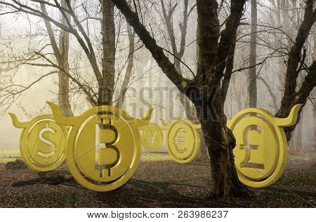 Bullish Currency Hide In Foggy Forest At Sunrise. Waiting For The Perfect Momentum And Accumulating
