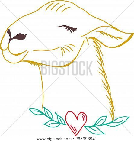 Happy Lama. Cute Hand Drawn, Kawai Style Lama Animal.  Colorful Drawing Of Cute Lama.