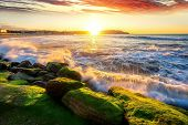 Beautiful morning sunset and Mossy rocks, Port Botany, Sydney, NSW Australia poster