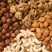 Nuts (almons, cashews, walnuts and filbers) poster