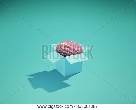 Human Brain Insde A Box . Thinking Outside The Box Concept . Innovative Ideas Concept . This Is A 3d